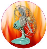 picture of a fan