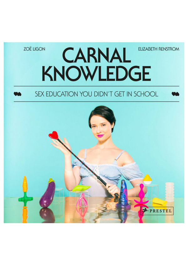 Carnal Knowledge: Sex Education You Didn't Get in School Image 0