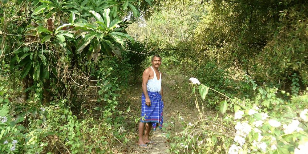 Jadav Payeng single-handedly planted and grew a jungle!