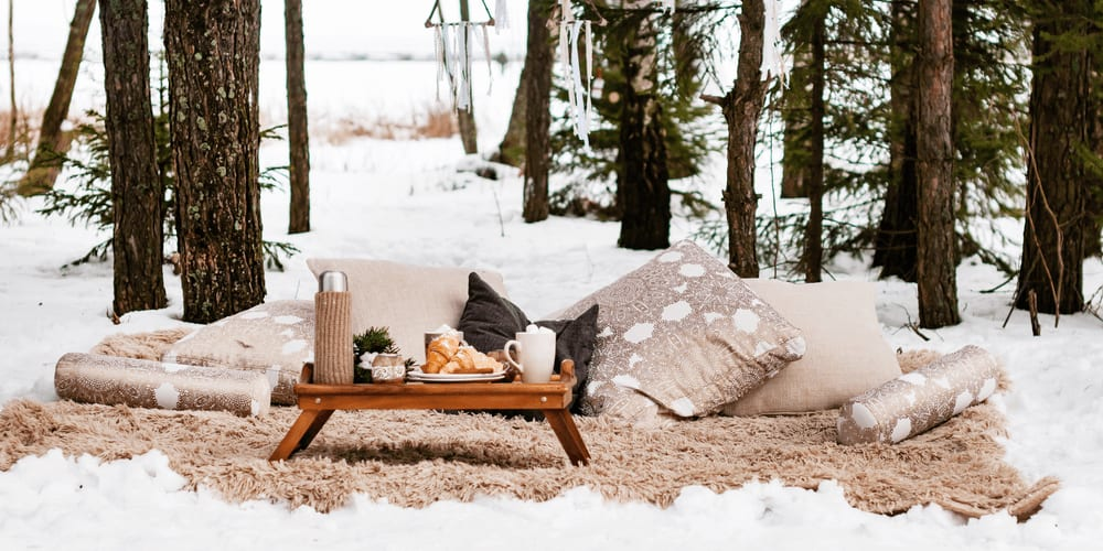 Take a few warm blankets, tasty sandwiches and hot soup in a thermos and go on a winter picnic.