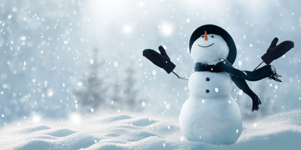Build a snowman and decorate it with rocks, twigs and a warm scarf and hat to make it look absolutely real.