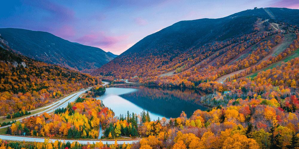 U.S. landscape