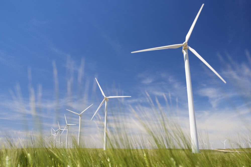 Spain was the first country to rely on wind power as the main source of electricity.
