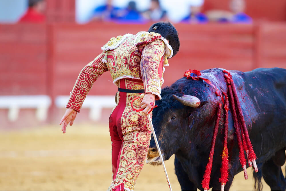 Many people perform different functions at a real Spanish corrida