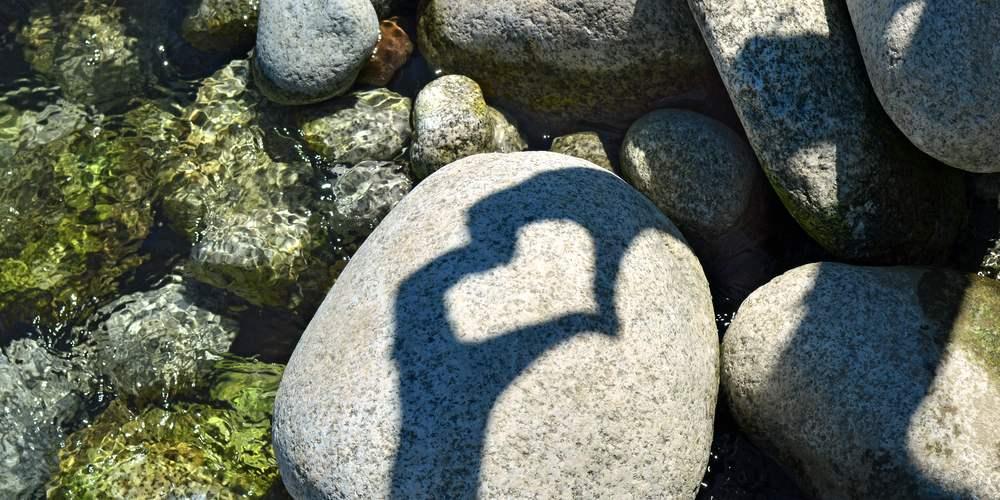 shadow-of-heart