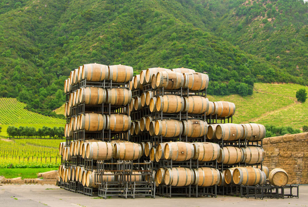 Stacked wine barrels in the winery, Chile