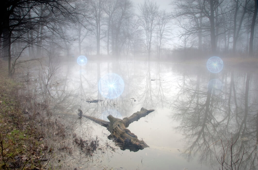 La Luz Mala is an evil light roaming the swamps of Uruguay and Argentina