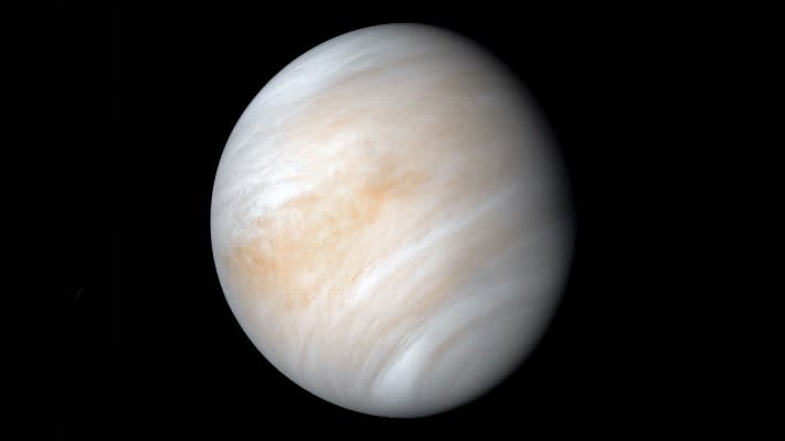 During a Venus retrograde, it's best to avoid starting new relationships or making drastic changes to your appearance.