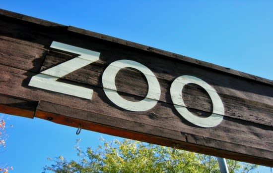 Werribee Zoo now accessible for all
