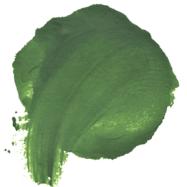 green poo colour