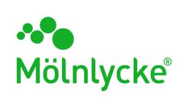 molnlycke green text image logo