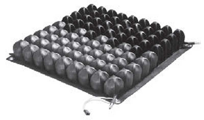 Double valve cushions