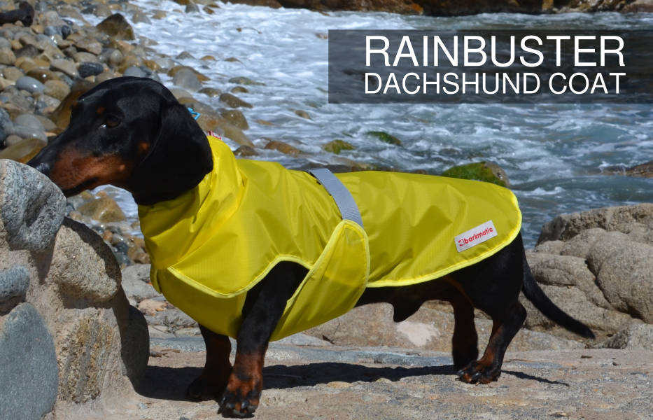 Barkmatic dachshund rainbuster coat