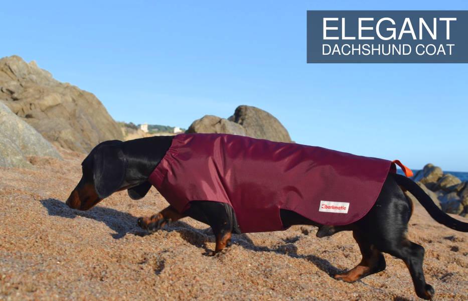 Barkmatic dachshund elegant coat