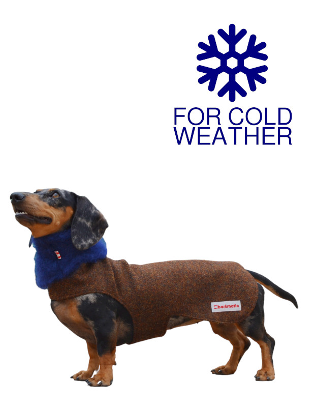 Barkmatic dachshund coat