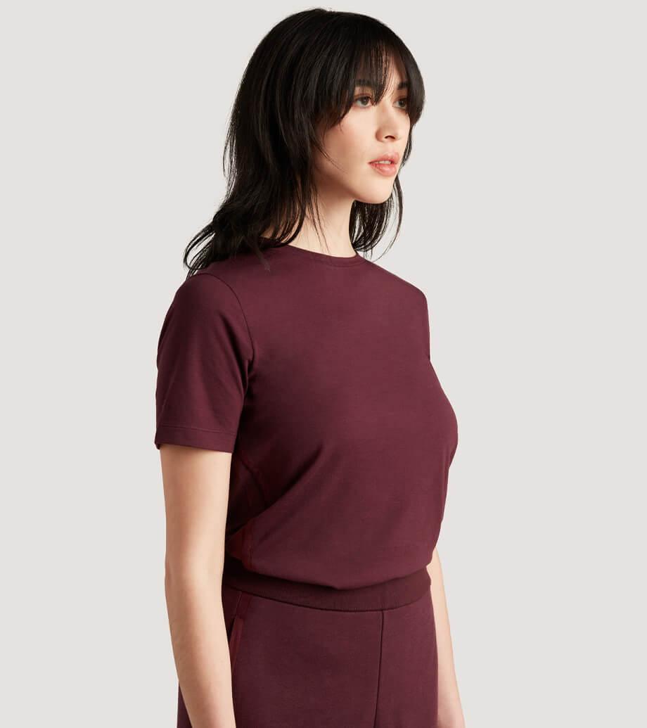 icebreaker's women's merino t-shirt