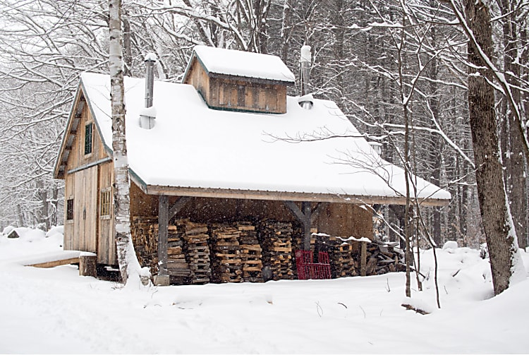 Staying Warm in Winter: Firewood and Heat
