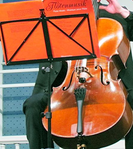 Cello pjtsiw