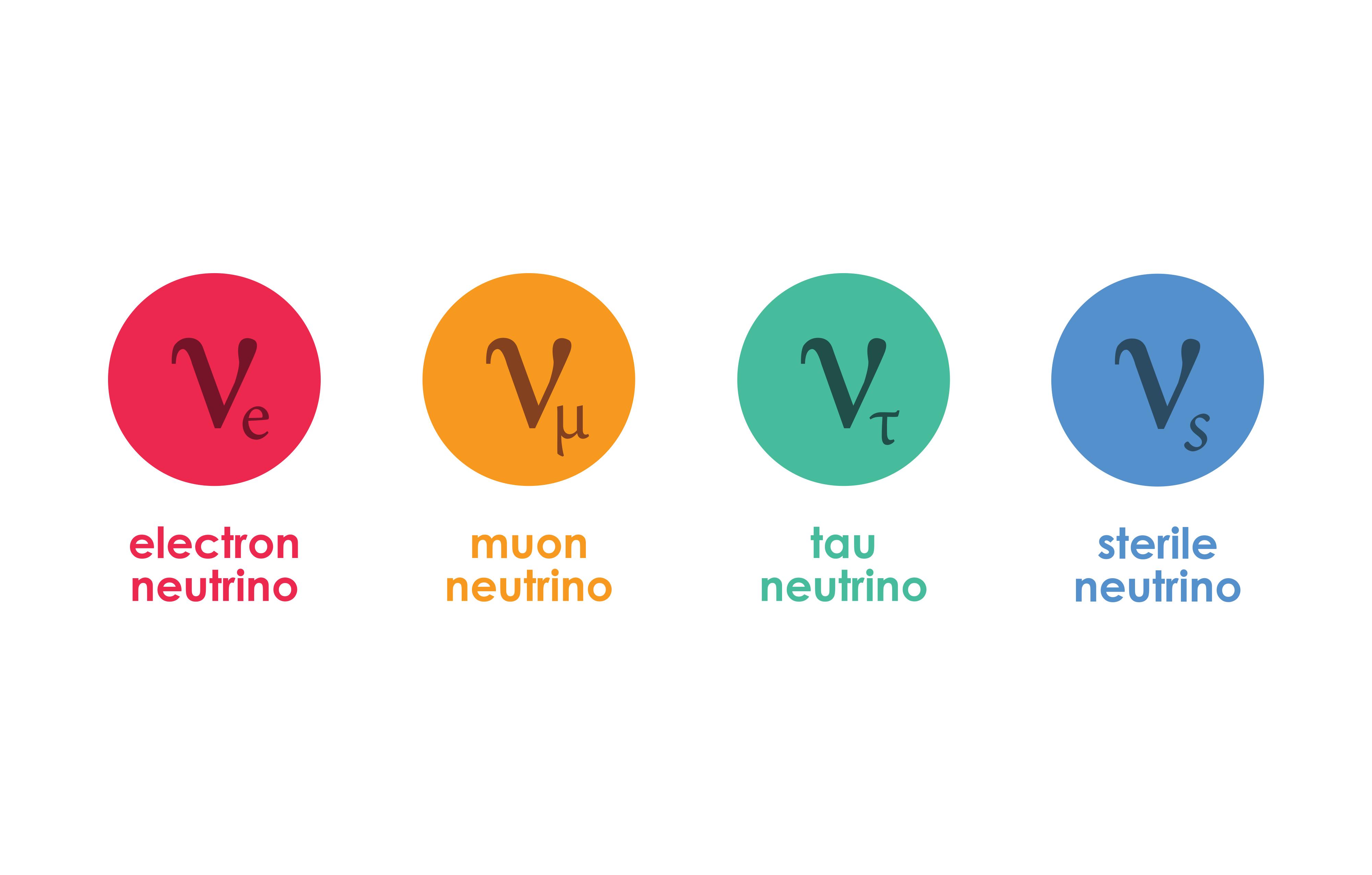 Four types of neutrinos?