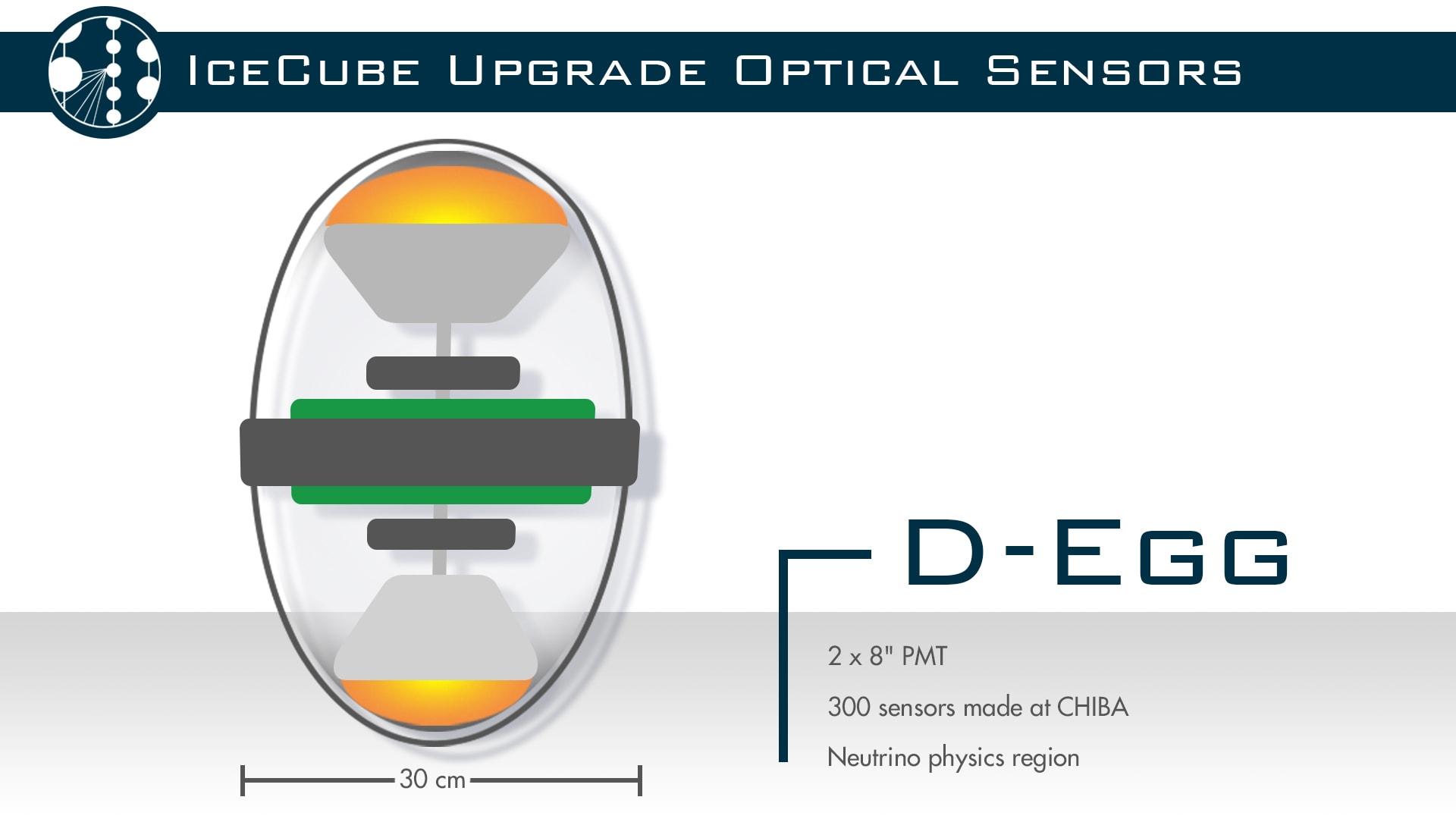 Optical sensor: D-Egg