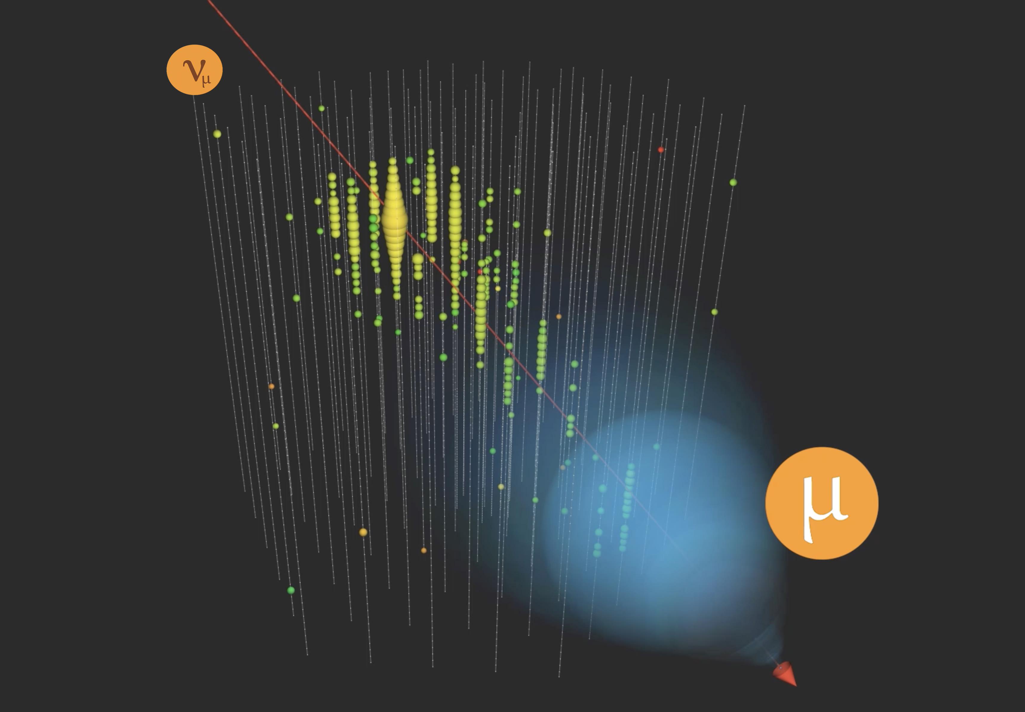 A muon neutrino interacts in IceCube