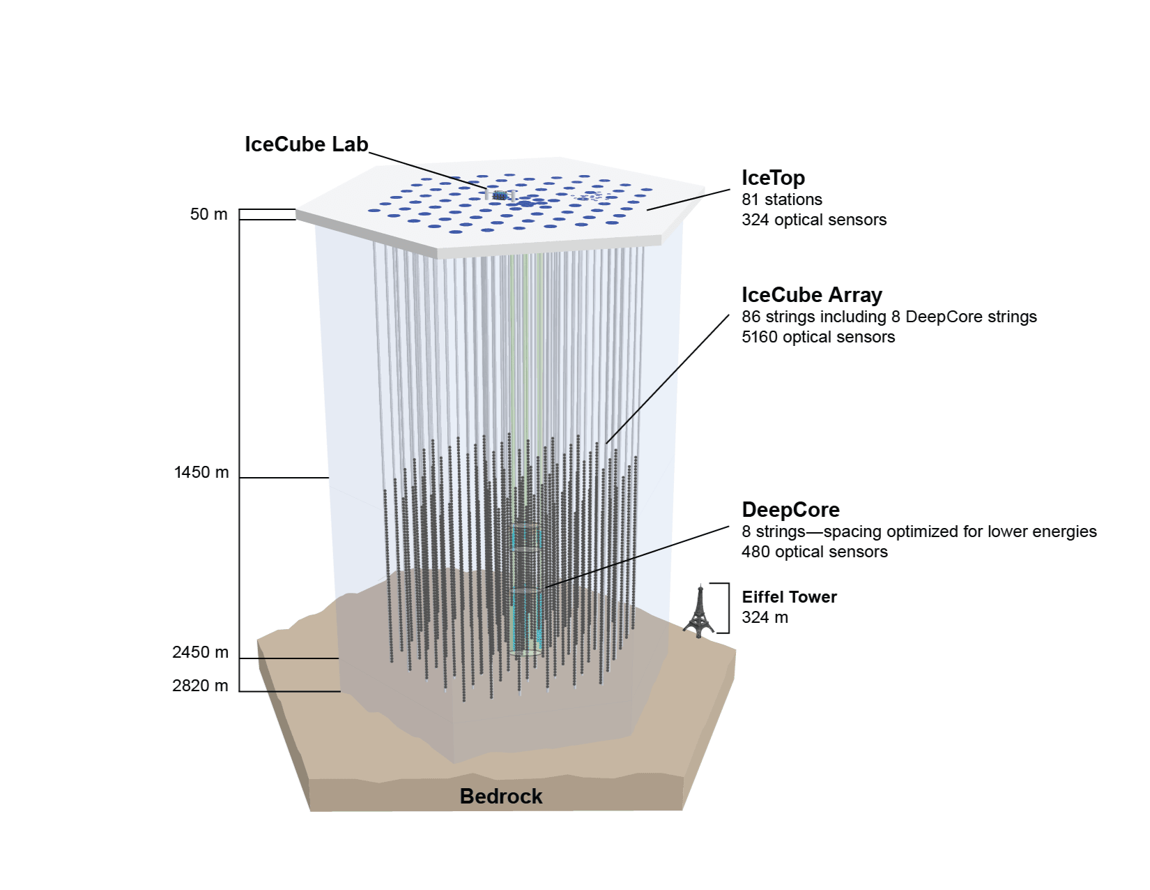 A schematic of the in-ice portion of IceCube, which includes 86 strings holding 5,160 light sensors arranged in a three-dimensional hexagonal grid.