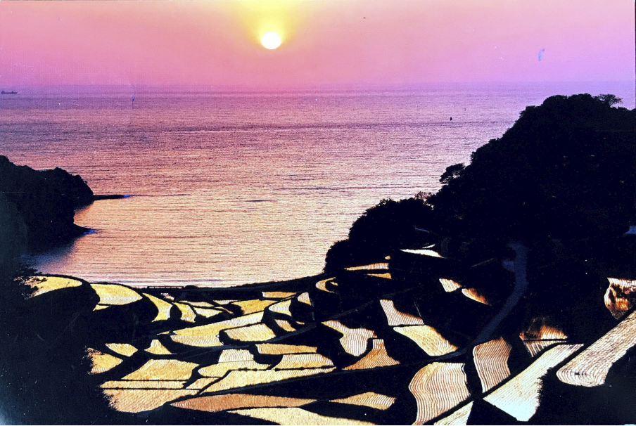 Cover of postcard from Aya Ishihara (Chiba University, Japan)