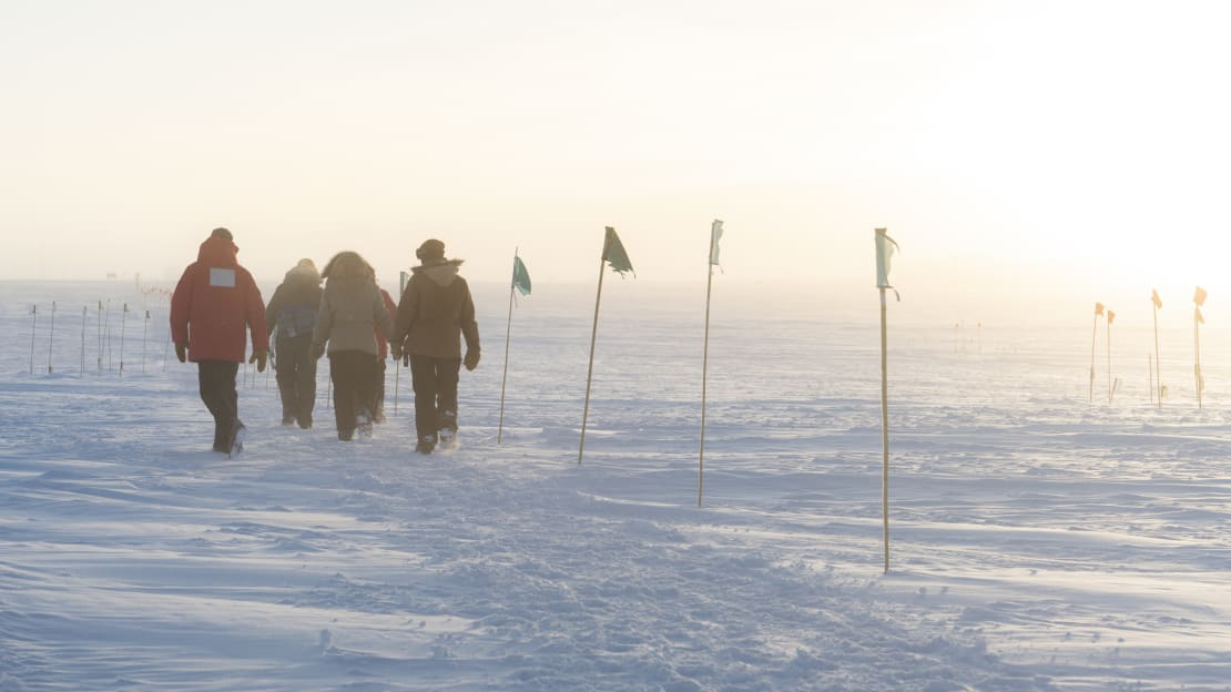 Group from behind as they walk back to the South Pole station along a flag line.