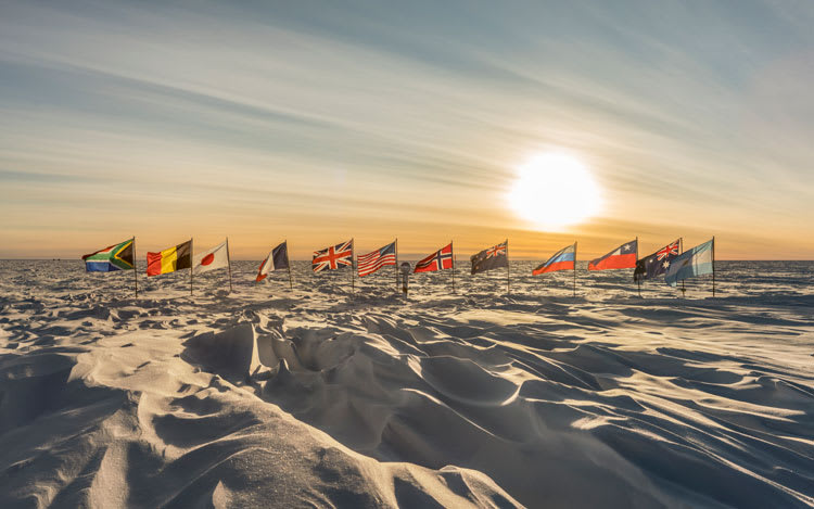 flags in sun