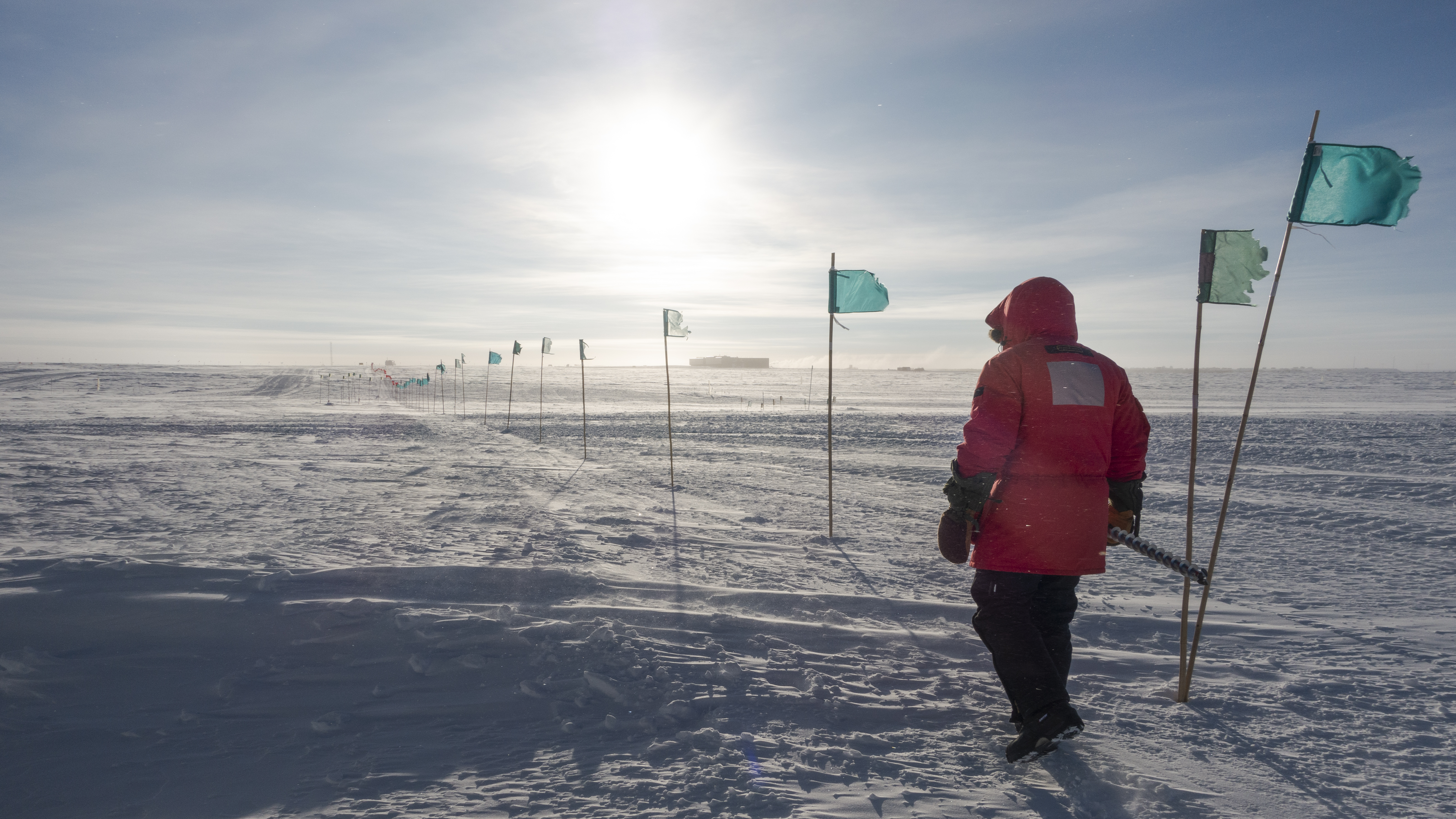 Person in red parka seen from behind as they walk along flag line to the South Pole station.