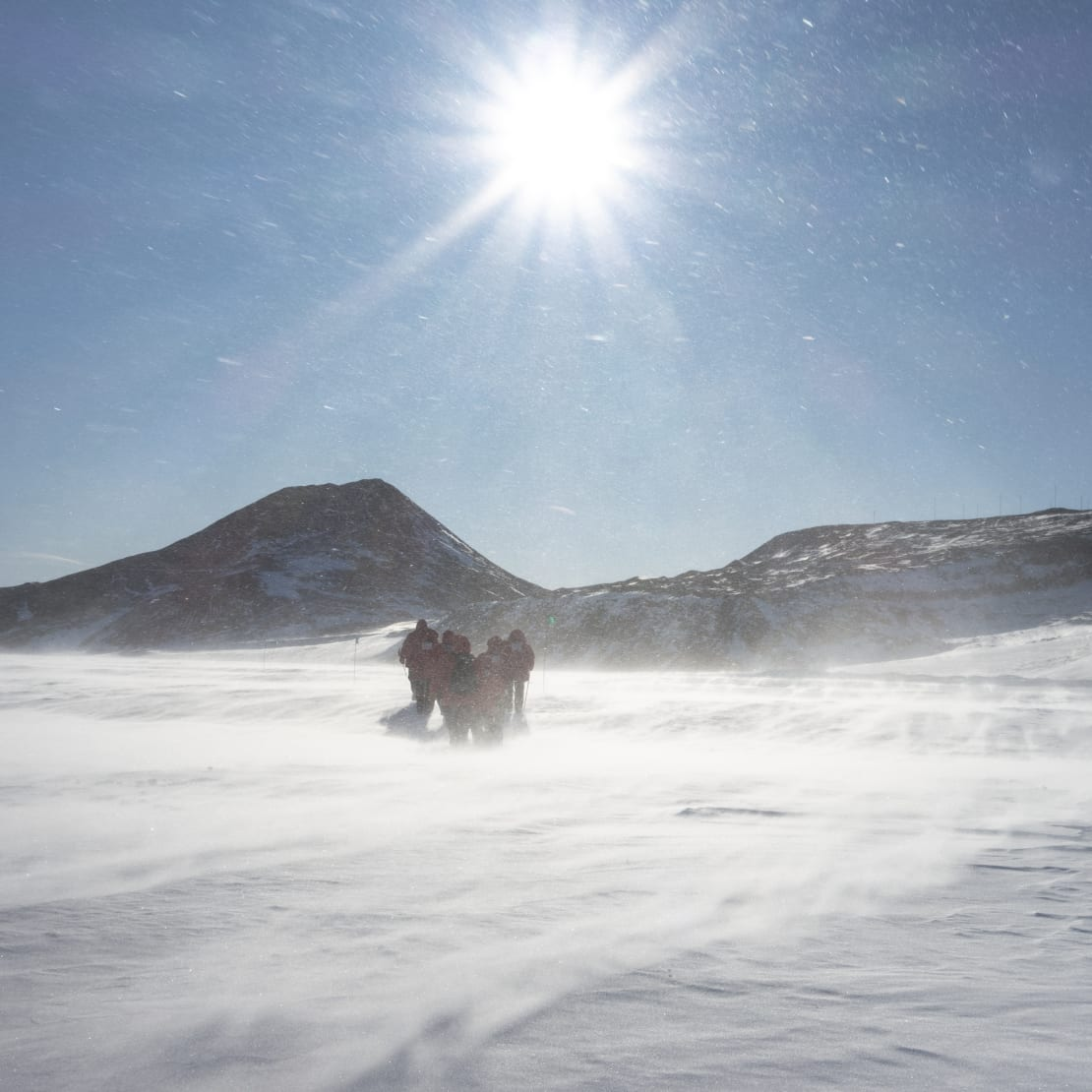 Bright sun in sky, with four people in parkas walking and huddled against strong blowing snow.