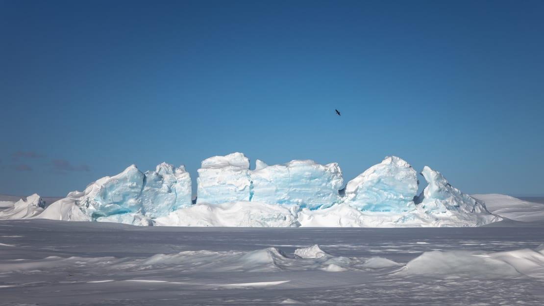 View of pressure ridge with skua flying overhead.