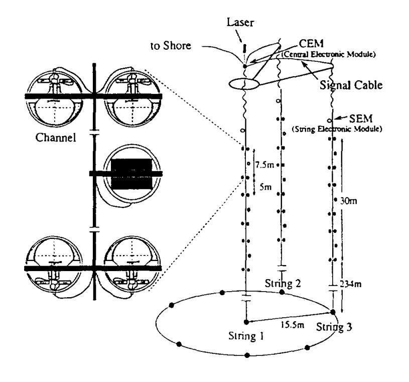 Schematic of the Lake Baikal neutrino telescope.