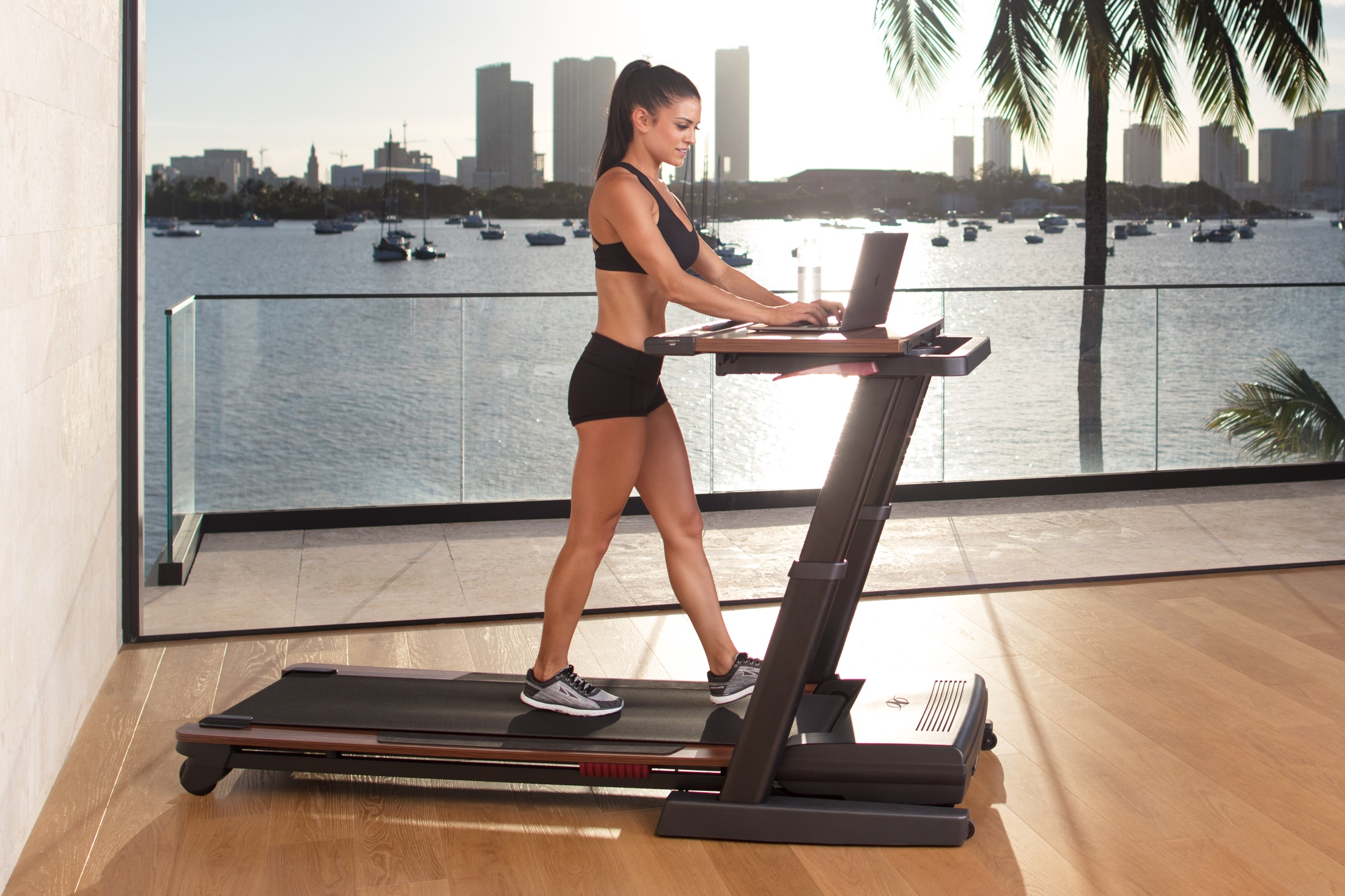 NordicTrack Treadmill Desk Platinum gallery image 4