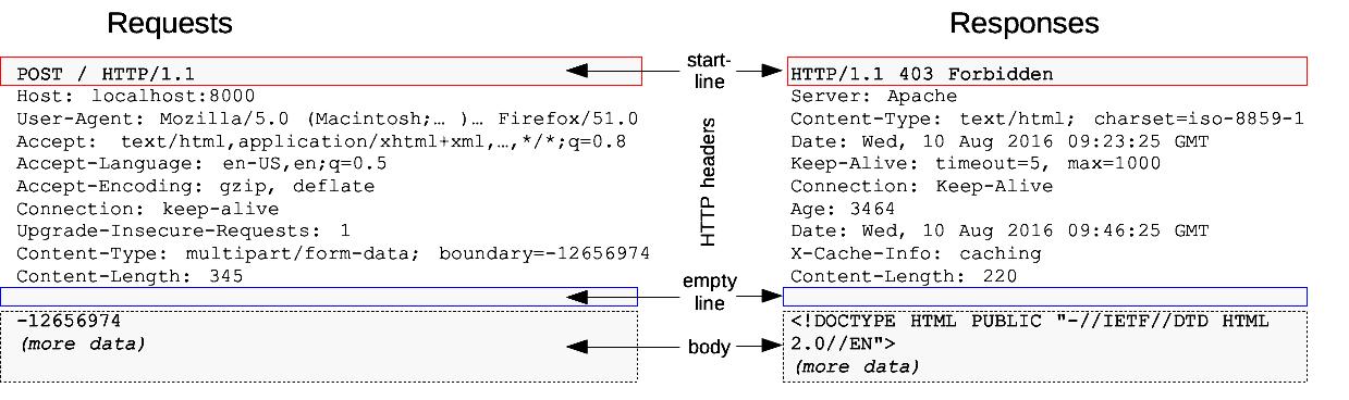 https://res.cloudinary.com/idiomprog/image/upload/v1616226497/httpmsgstructure2_htshjp.png