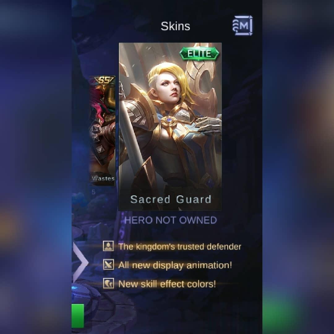 Skin Hilda Sacred Guard