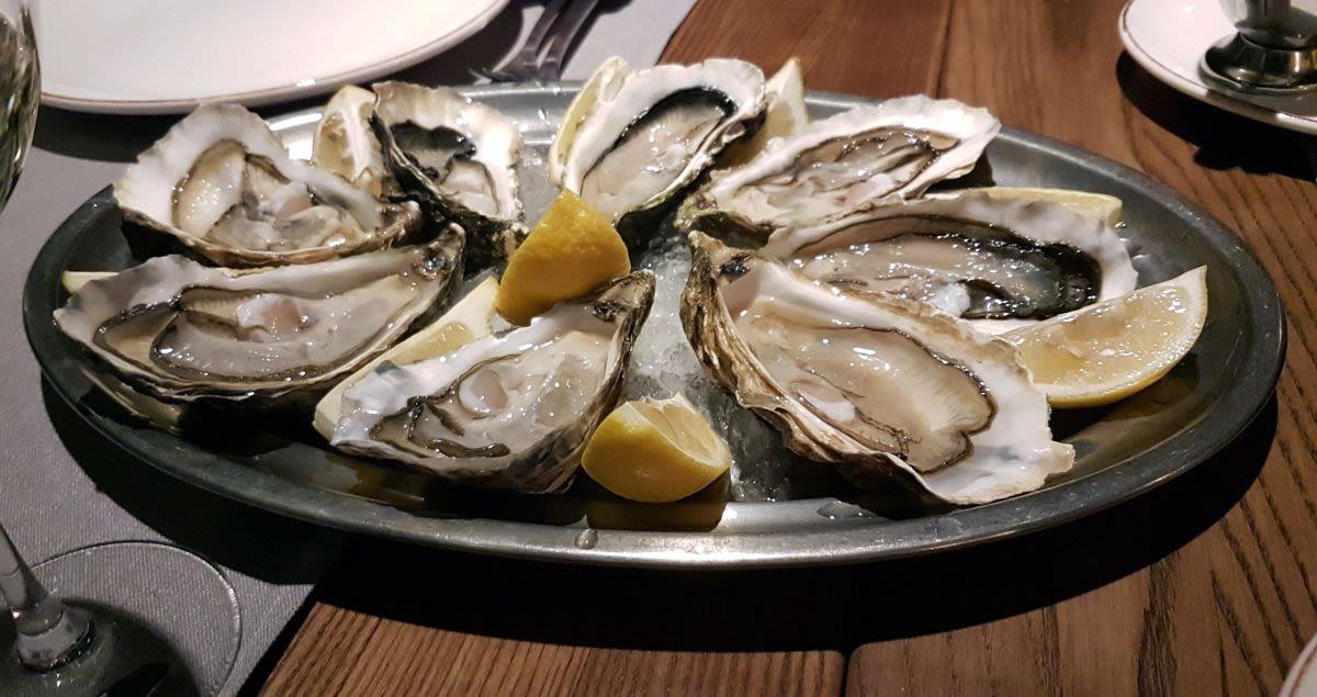 צדפות אויסטרס במסעדת פורטו בקייב - מומלץ לדייטים רומנטים