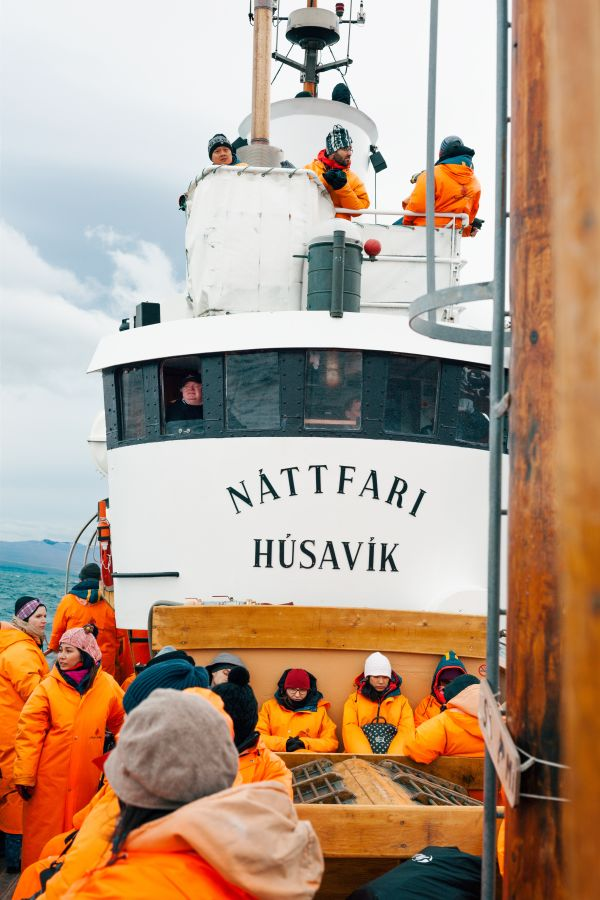 שייט לוויתנים באיסלנד בעיירת Husavik