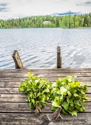 סאונה בפינלנד - אגודת עצים על רקע אגם פיני