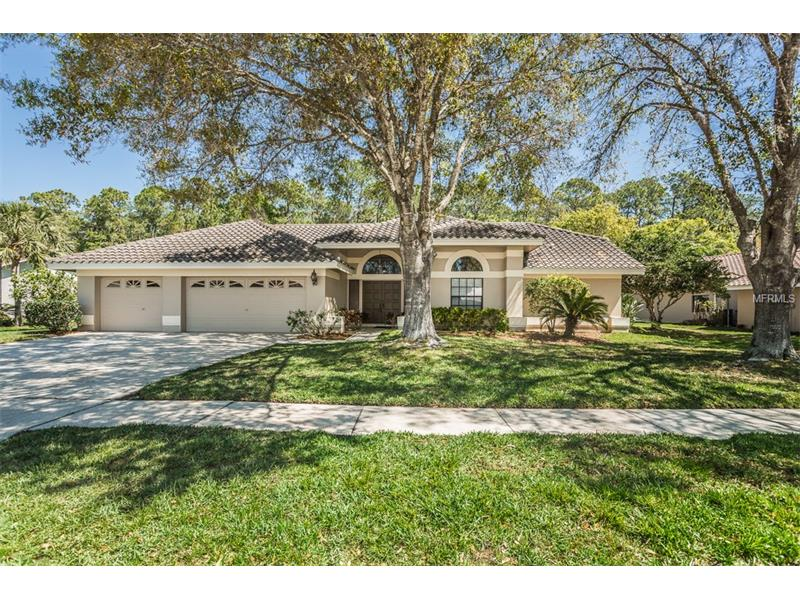 4049 WELLINGTON PARKWAY Palm Harbor  - The Gary & Nikki Team, Keller Williams Realty Tampa Bay Homes For Sale