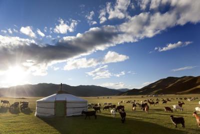 МИБ предоставил очередной кредит на развитие малого и среднего предпринимательства в Монголии