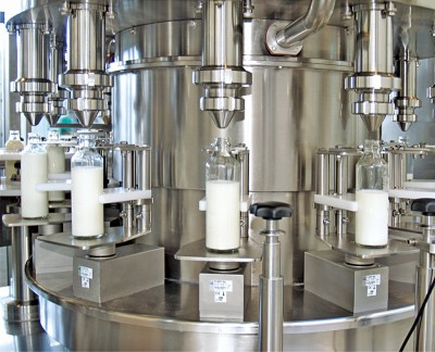 First joint project of IIB and BSTDB – production of dairy products in European Union