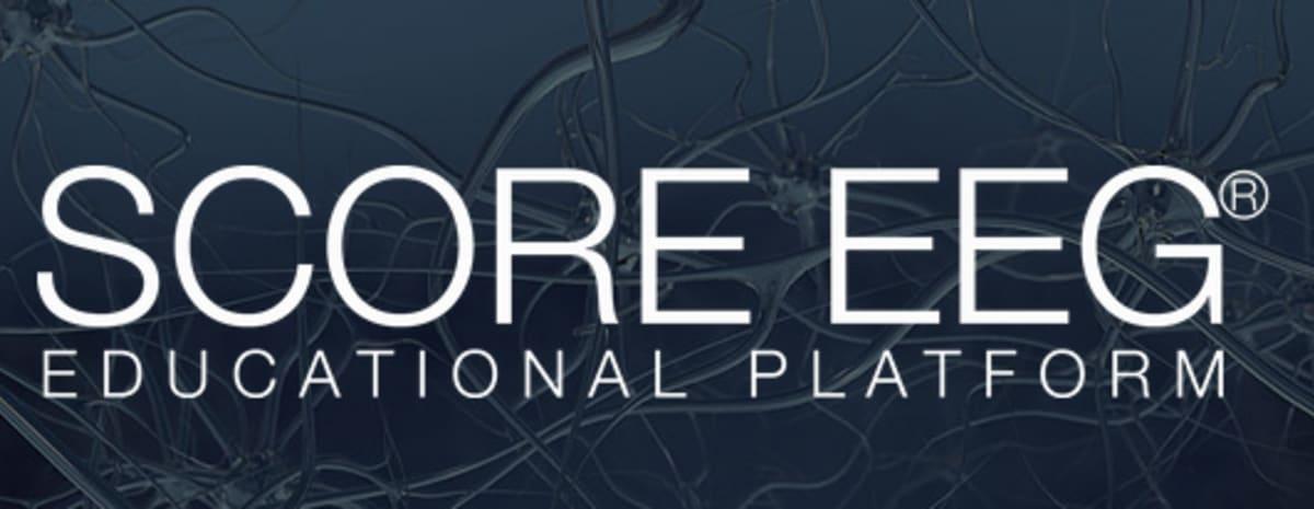 Non-ILAE Educational Resources // International League