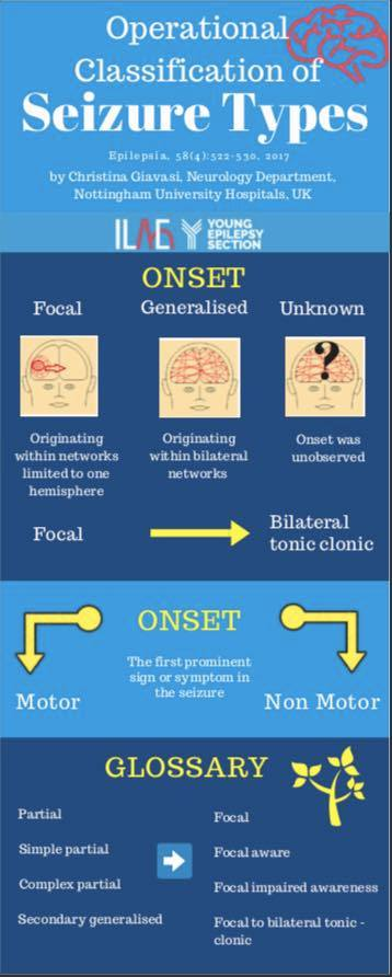 Infographic - Operational classification of seizure types
