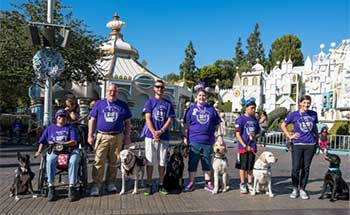 Seizure dogs and their friends