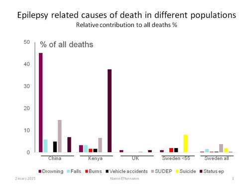 Figure 1. Causes of epilepsy-related deaths in four different countries. The figure emphasizes the issues that need to be addressed to reduce mortalities vary across cultures and resources. Of note, in Sweden, the risks also shift with age, with suicide being a leading cause among younger patients.