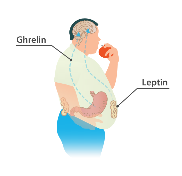 Running impacts your leptin and ghrelin levels, and helps you control your appetite.