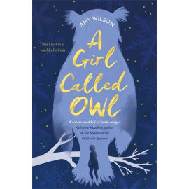 A Girl Called Owl (Amy Wilson, Paperback, 9781509832460)