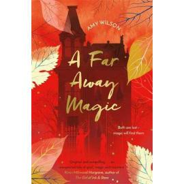 A Far Away Magic (Amy Wilson, Paperback, 9781509837755)