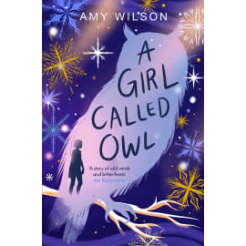 A Girl Called Owl (Amy Wilson, Paperback, 9781529057751)